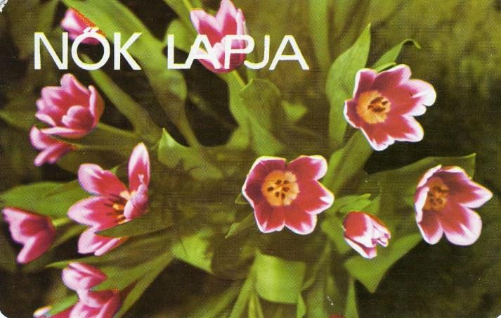 NŐK LAPJA - 1985