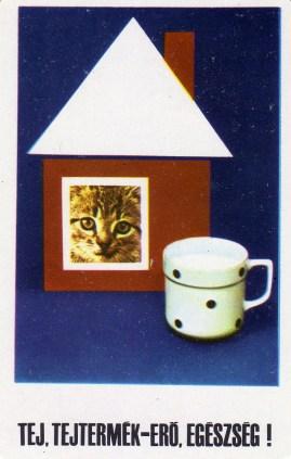 Tej, tejtermék - 1972