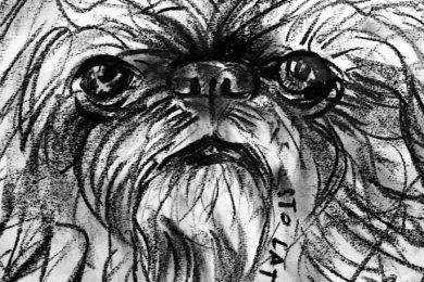 karykatura portret psa