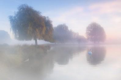 On a Misty Morning