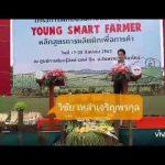 ตราศรแดง-กรมส่งเสริมการเกษตร ปั้นเกษตรกรรุ่นใหม่ ให้ปลูกผักเพื่อผักเพื่อการค้า