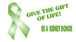 kidney_donor