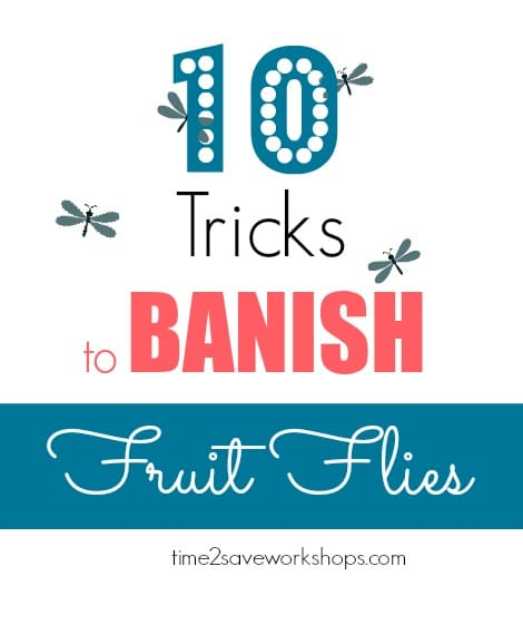 how-to-get-rid-of-fruitflies
