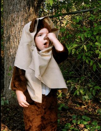 ewok-halloween-costume