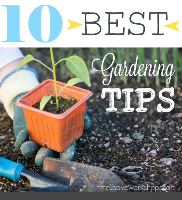 10 best gardening tips