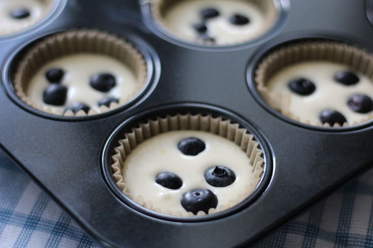 Cheesecake batter with blueberries on top in a muffin tin.