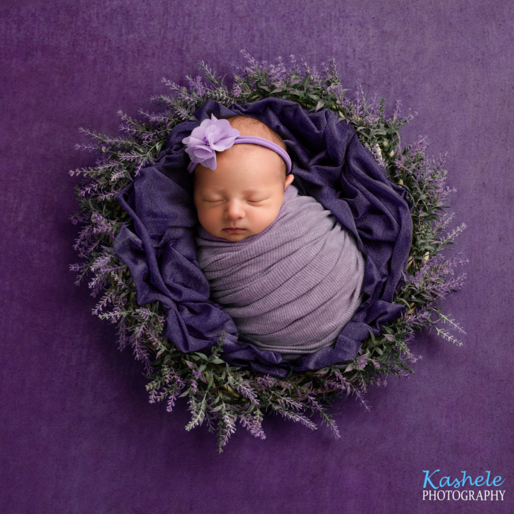 Swaddled lavender setup for Eagle Mountain Newborn Photographer post
