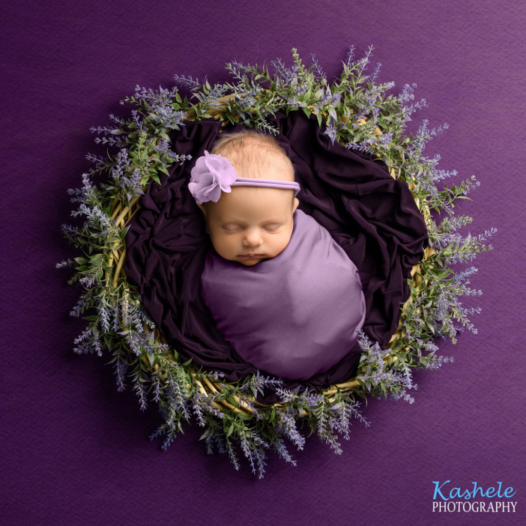 Baby surrounded by purple lavender for Logan Newborn Photographer post
