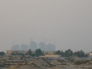 Bahraini Desert