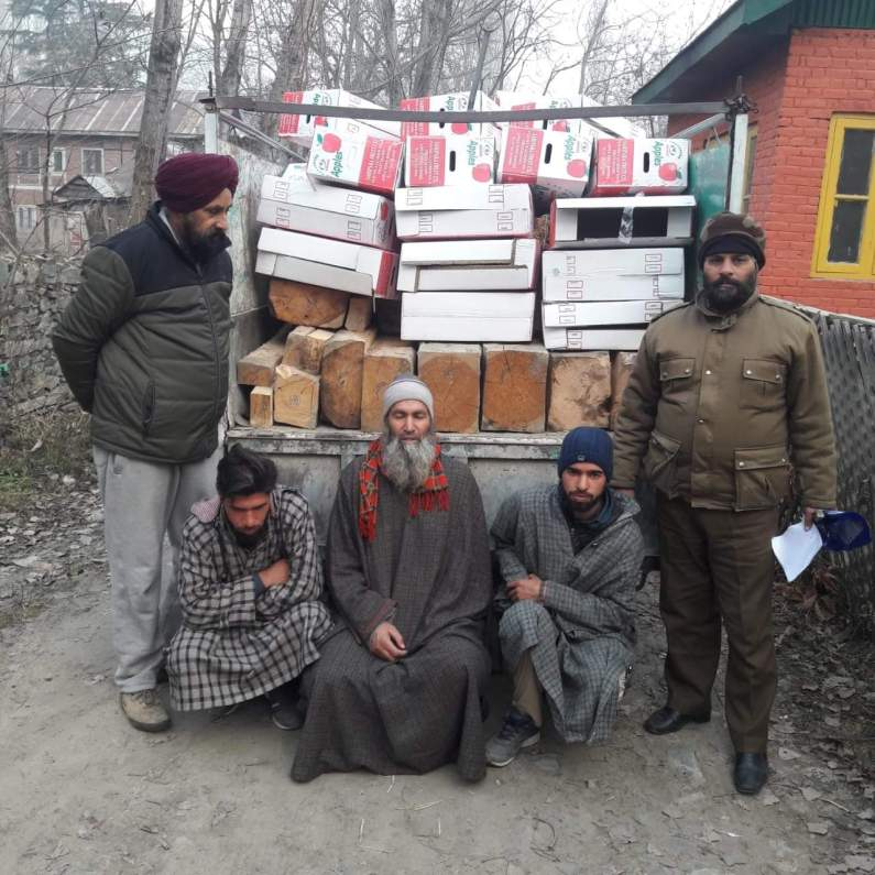 Illegal timber siezed three arrested in Baramulla village