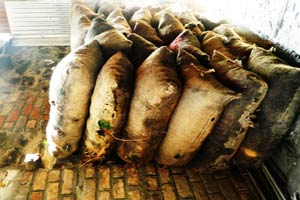 Gunny bags containing coal for distributing among the poor by Shamima (Photo-Abdul-Basit)