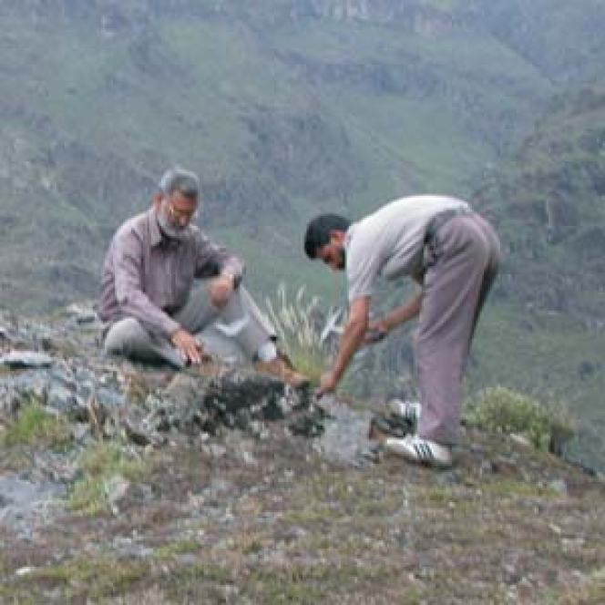 Prof Bhat collecting rock samples from Guryul Ravines during a visit in 2011