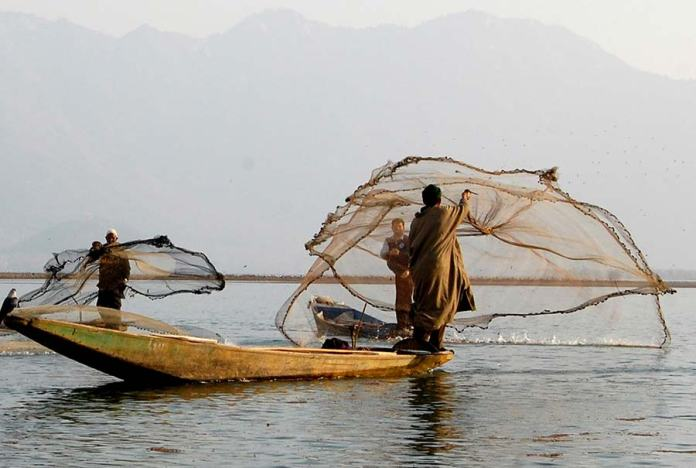 Nets-used-to-catch-fish