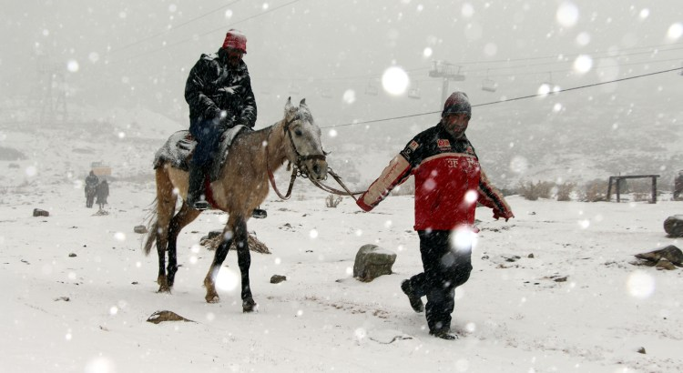 Fresh snowfall in Gulmarg