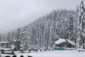 Light Snowfall In Kashmir Upper Reaches