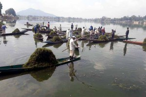 Govt Sets Up Panel To Declare Dal Lake As ESZ