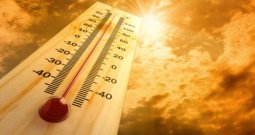 Kashmir, Jammu & Ladakh May See Temp Rise Of 7 Degrees By 2100: Study