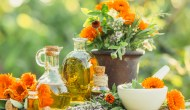 Herbal Beauty Tips for Summer