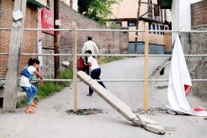 Kashmir'sSocial Animals and Covid-19