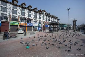 Strike Against New Land Laws Shuts Markets In Kashmir