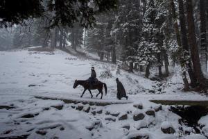 Fresh Snowfall In Gulmarg, Other Higher Reaches