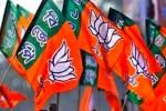 Statehood To J&K Soon: BJP
