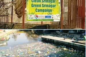 'They Were Once Mirrors': Green Srinagar's Stinking Waters