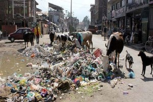 No Experts for Waste Management