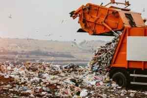 NGT Raps J&K Over Dumping Waste Into Wetlands, Wular Lake