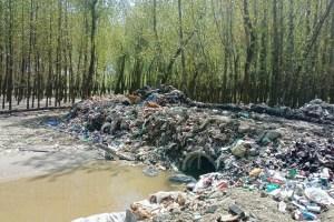 Grabbing Land to Set up Illegal Garbage Dump Sites