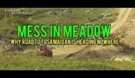 Mess In Meadow: Why Road to Tosamaidan Is Heading Nowhere?