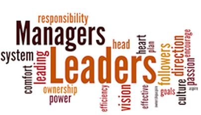 Potential Specializations in Management