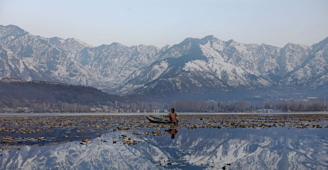 A boatman rowing his boat in Dal Lake