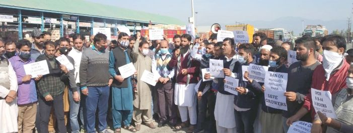 Fruit growers, traders, transporters protest over stopping of trucks on Srinagar Jammu highway