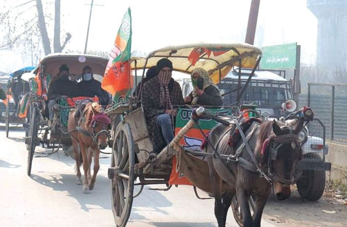 BJP takes out tonga rally in Sopore with great fanfare