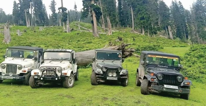 Kashmir's wildlife, meadows face new human threat: 'Off-Roadies'