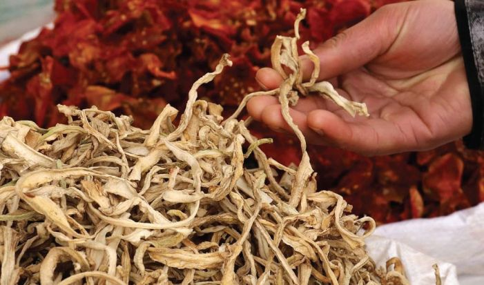 Drying of vegetables begins in Kashmir for long winter ahead