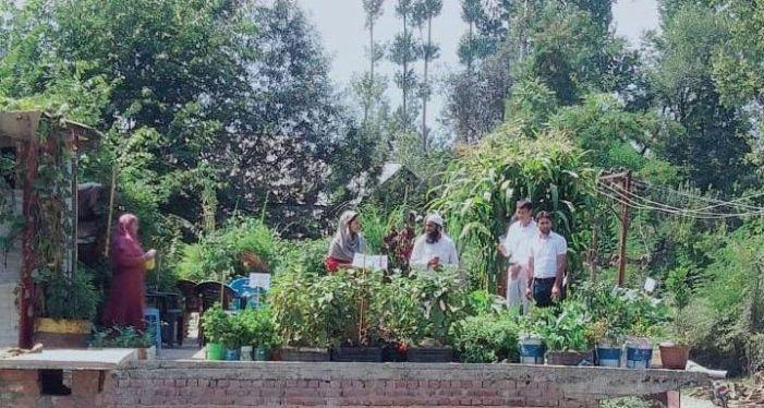 Rashid's roof becomes a shining light for organic farmers in Shopian