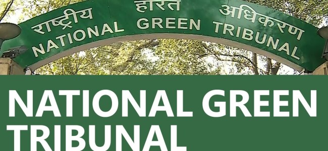 NGT refuses to entertain plea to release adequate water from dam to Narmada downstream