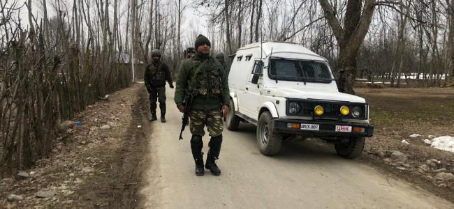 Gunshots heard as forces lay siege over Tral woods
