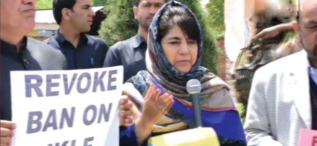 PDP will be part of next govt in JK: Mehbooba in Shopian