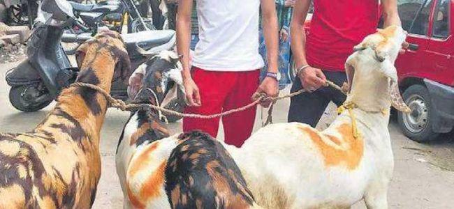 People celebrate Eid-ul-Adha, offer namaz at homes in Delhi amid pandemic