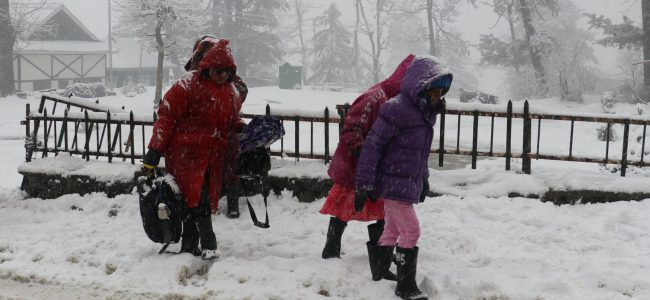 Fresh snowfall in higher reaches of Kashmir, rains lash plains