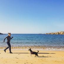 plaża w Bretanii.