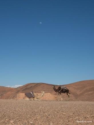 Maroko samochodem