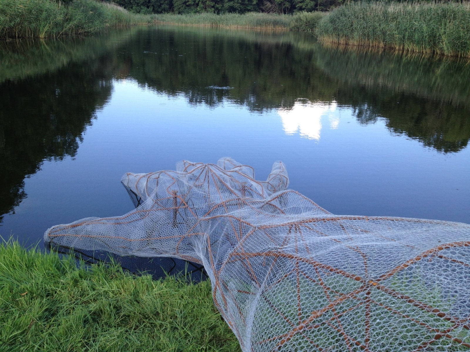 Testing the Waters, Sculpture, Steel and Hexagonal Wire Mesh, 2014, Schloss Trebnitz, Germany.