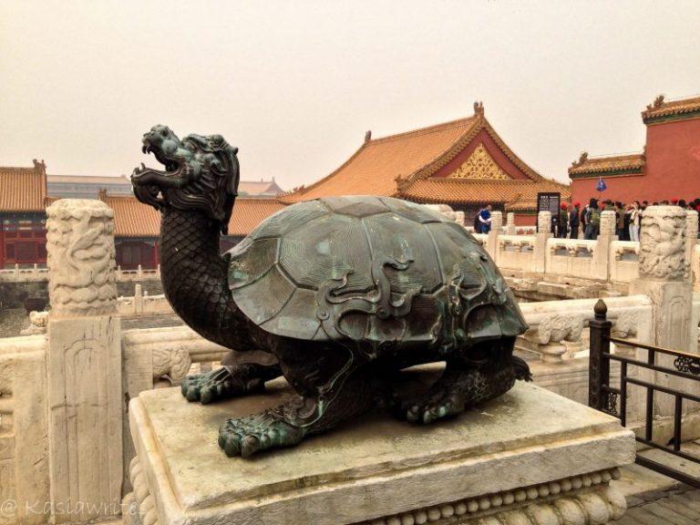 metal turtle sculpture