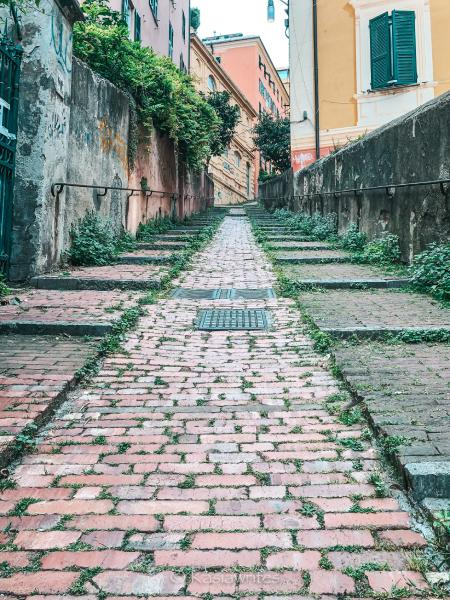 narrow steep street one of the many things to do in Genoa