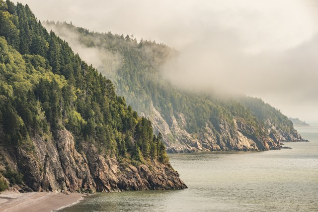 view of the Bay of Fundy coast shrouded in fog