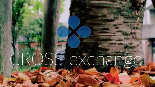 CrossExchange、11/27の日報 ロックアップ率がジワジワと
